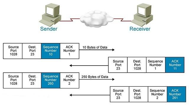 Номера подтверждений и порядковые номера в протоколе TCP